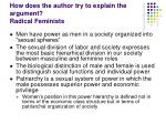 how does the author try to explain the argument radical feminists