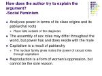 how does the author try to explain the argument social feminism