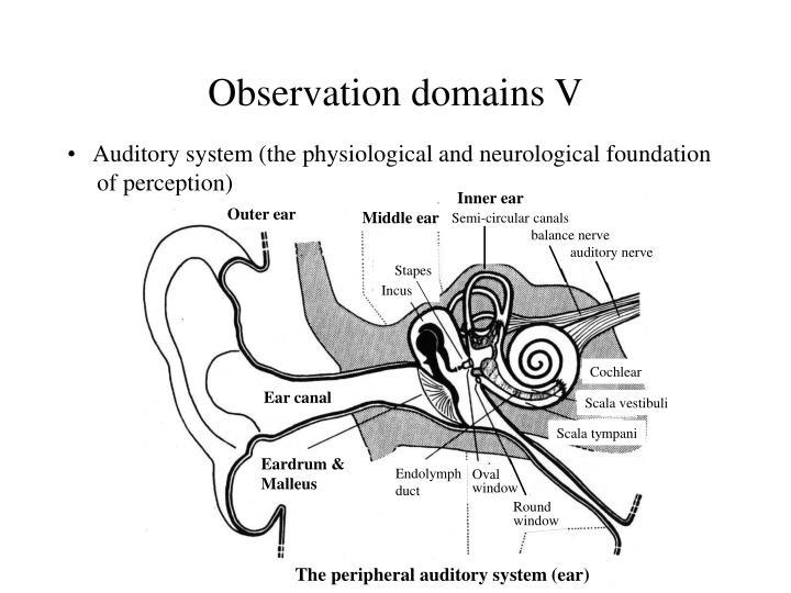 Observation domains V
