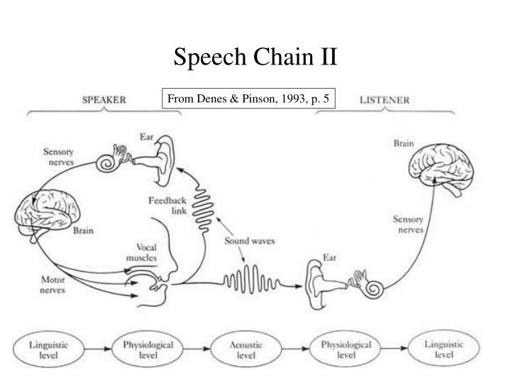 Speech Chain II