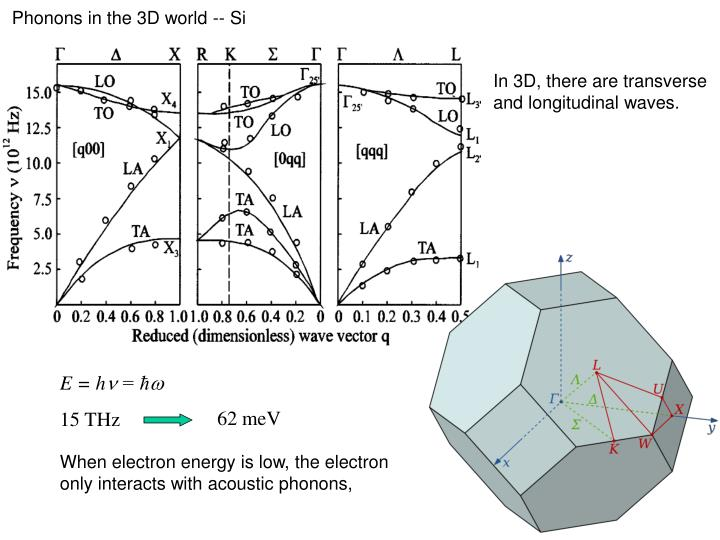 Phonons in the 3D world -- Si