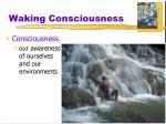 waking consciousness
