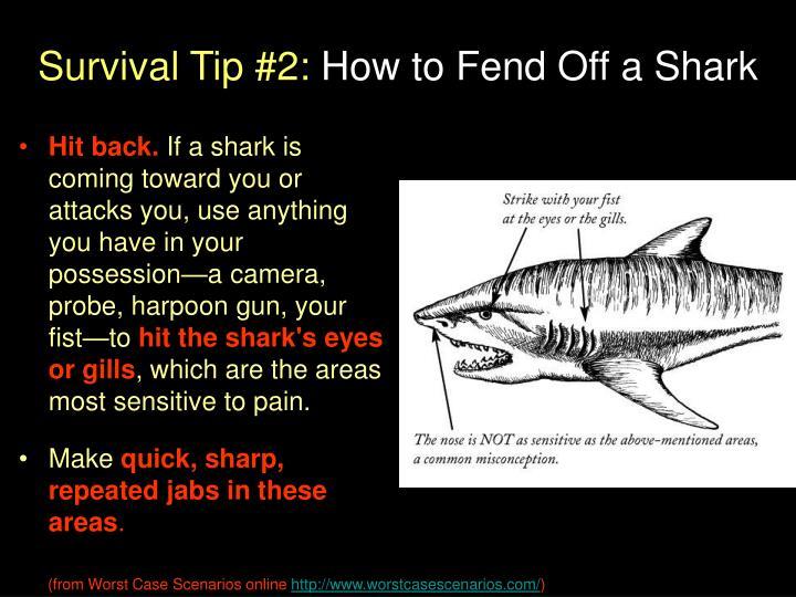 Survival Tip #2:
