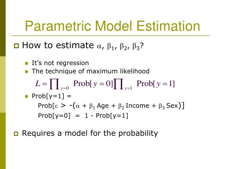 Parametric Model Estimation
