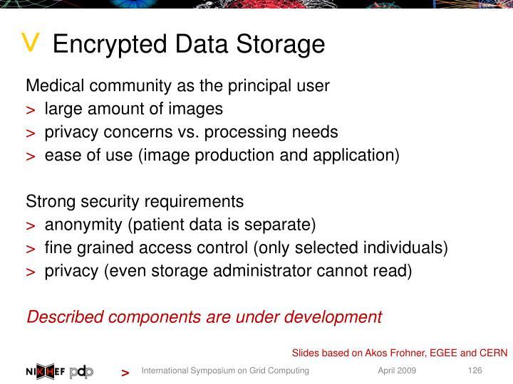 Encrypted Data Storage