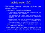 individuation 2 2