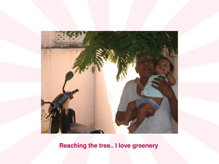 Reaching the tree.. I love greenery
