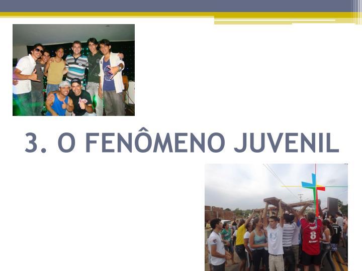 3. O FENÔMENO JUVENIL