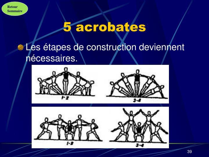 5 acrobates