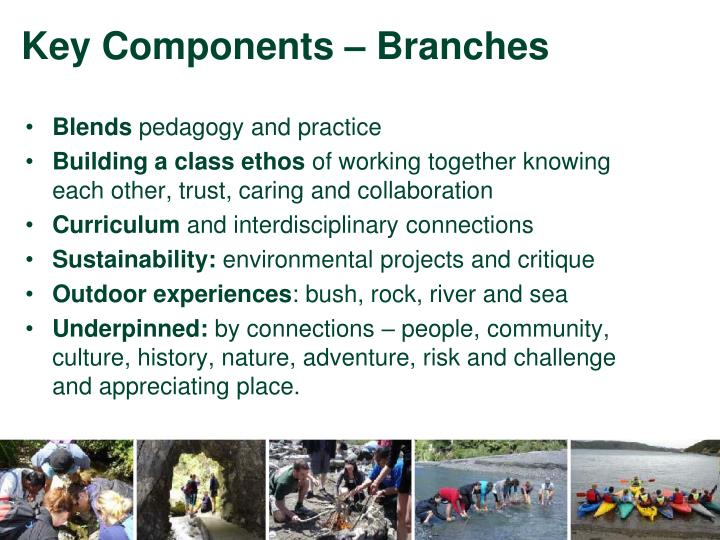 Key components branches