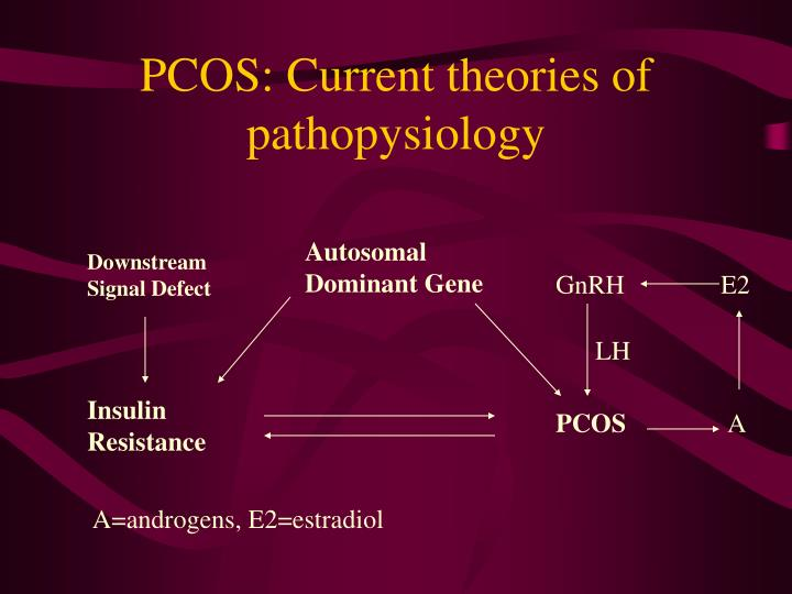 PCOS: Current theories of pathopysiology