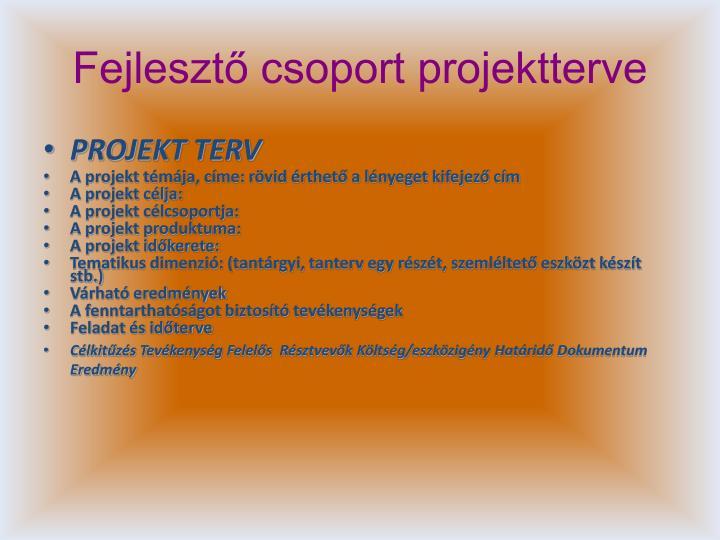 Fejlesztő csoport projektterve