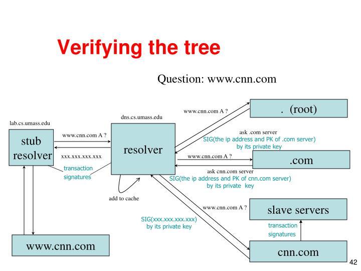 Verifying the tree