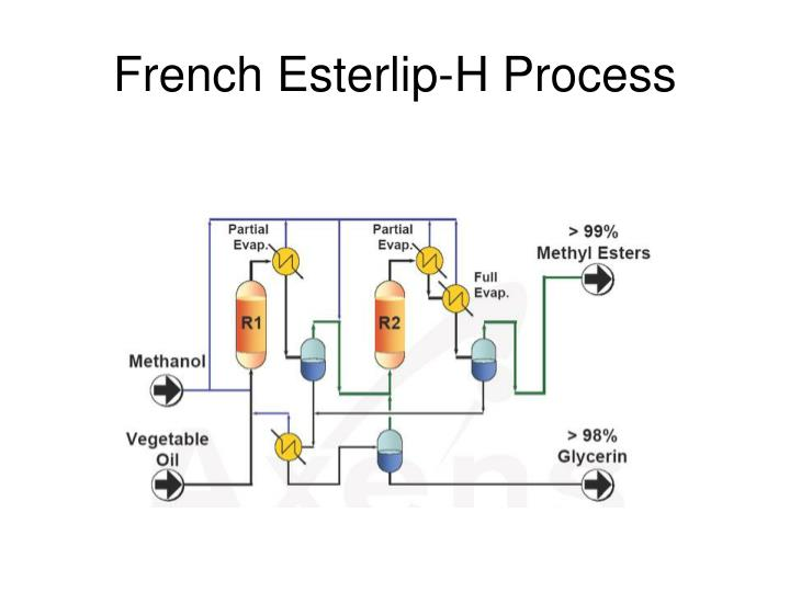 French Esterlip-H Process