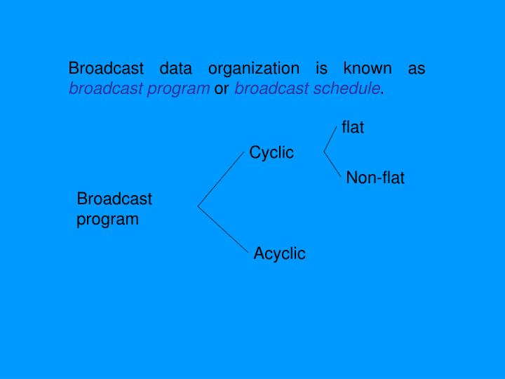 Broadcast data organization is known as