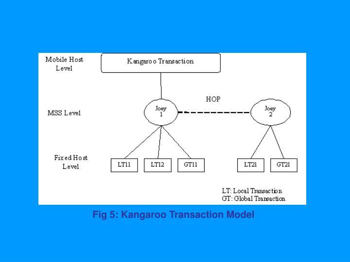Fig 5: Kangaroo Transaction Model