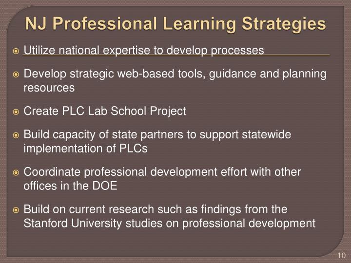 NJ Professional Learning Strategies