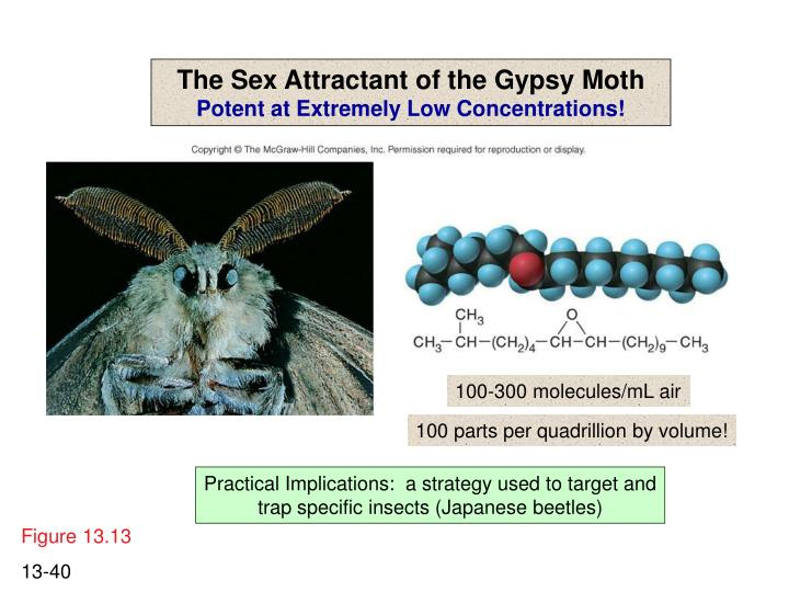 The Sex Attractant of the Gypsy Moth