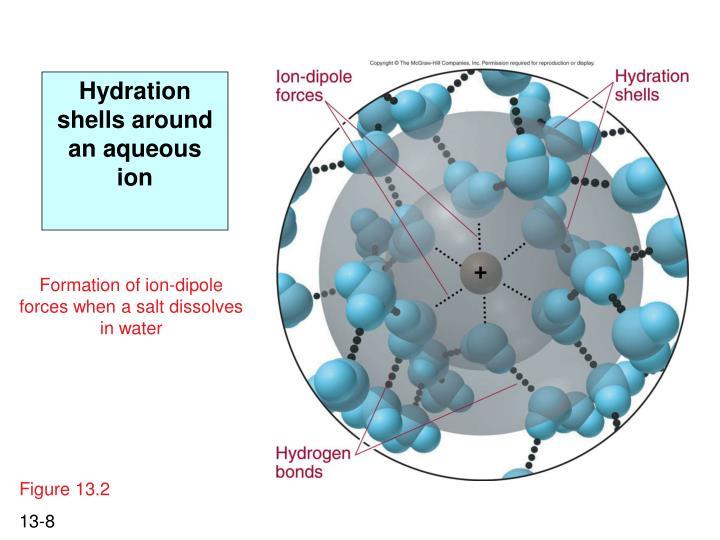 Hydration shells around an aqueous ion