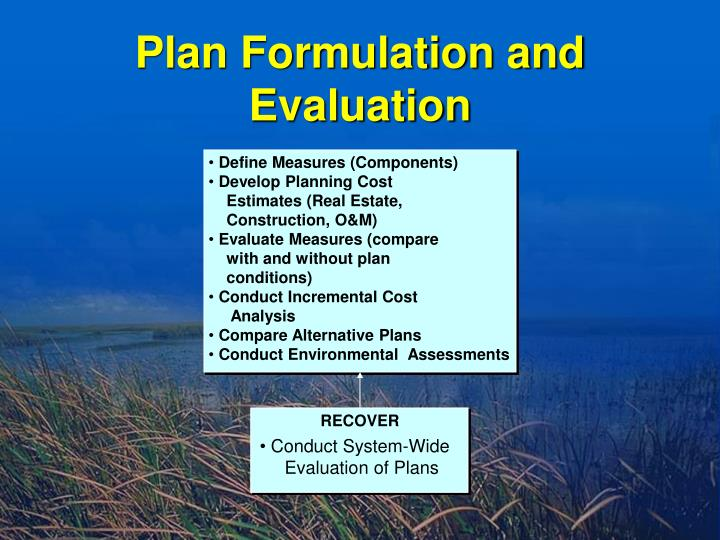 Plan Formulation and