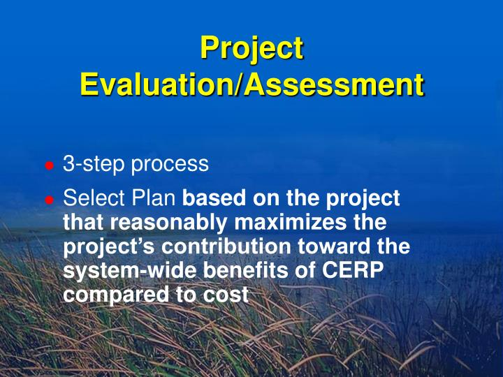 Project Evaluation/Assessment