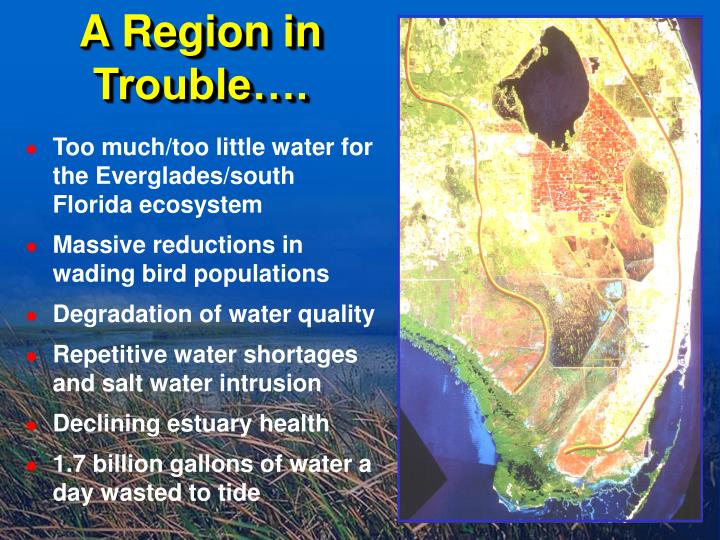 Too much/too little water for the Everglades/south Florida ecosystem