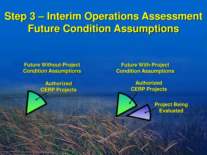 Step 3 – Interim Operations Assessment