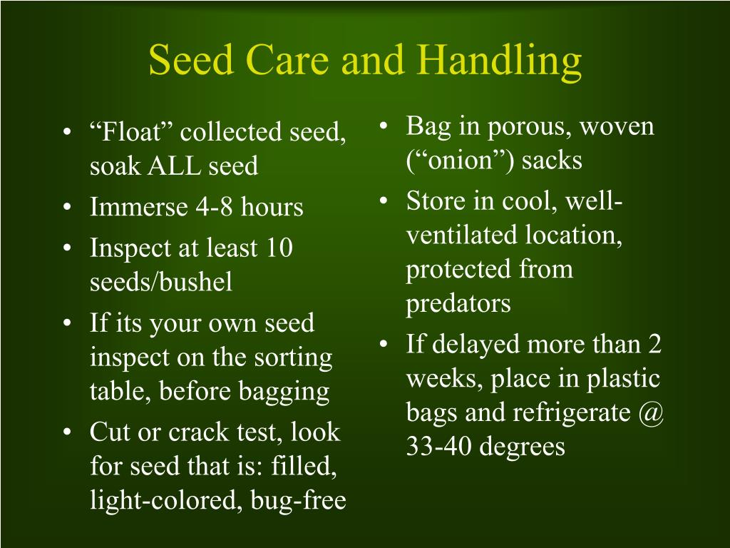 """""""Float"""" collected seed, soak ALL seed"""