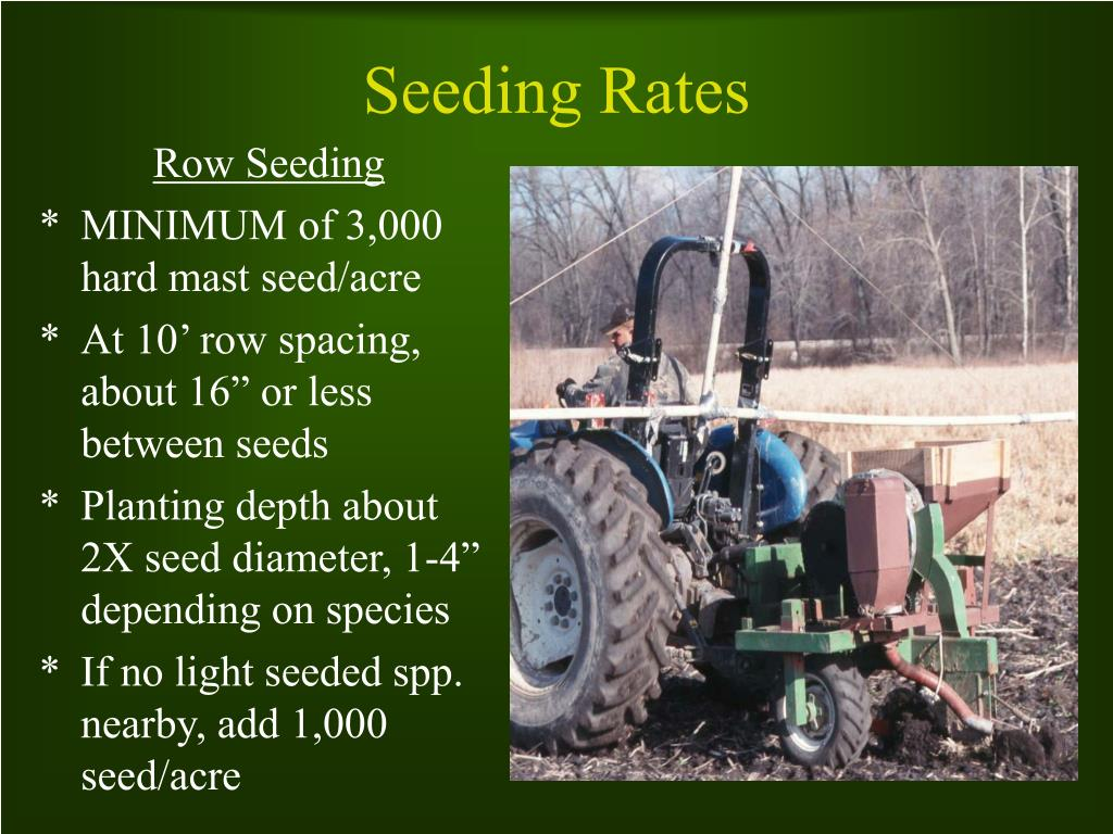 Row Seeding