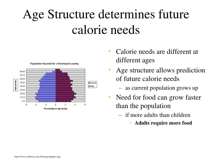 Age Structure determines future calorie needs
