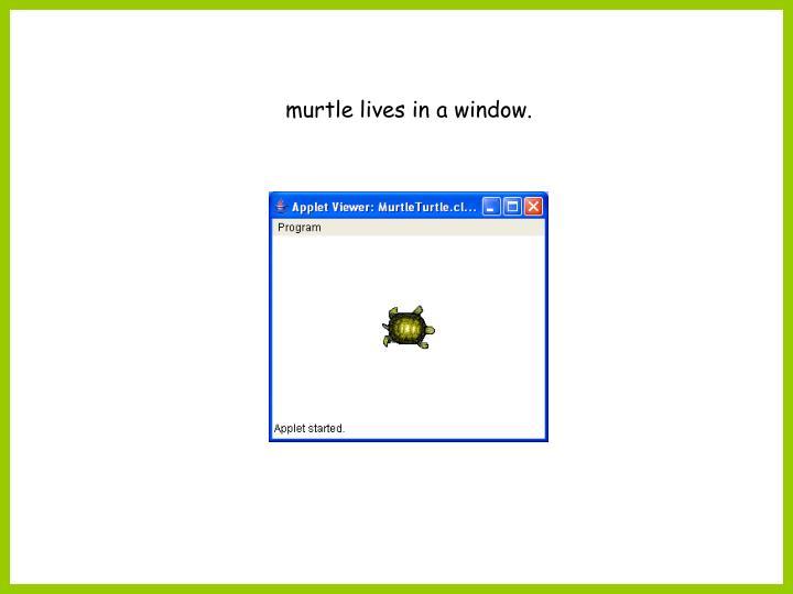 murtle lives in a window.