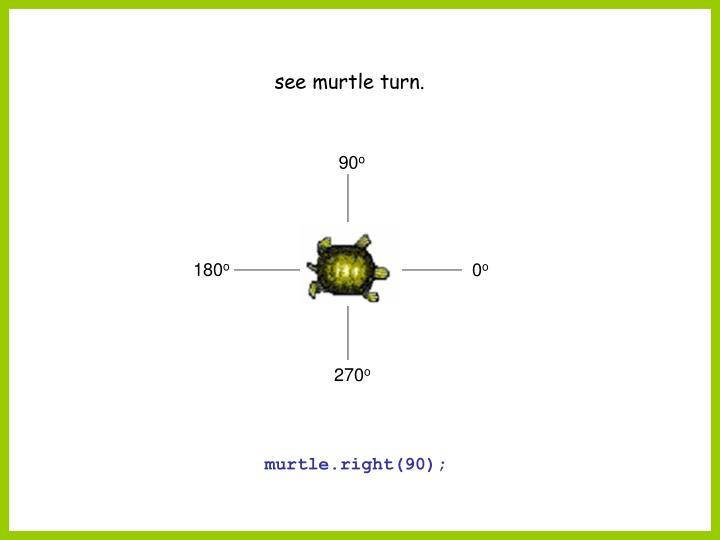 see murtle turn.