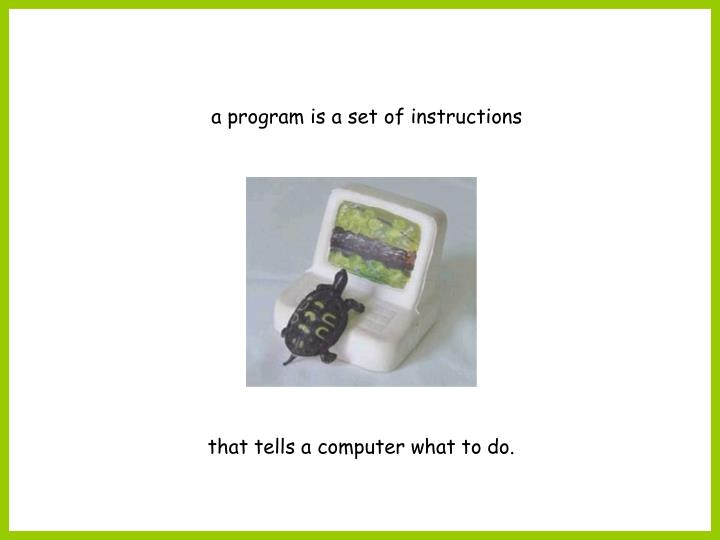 a program is a set of instructions