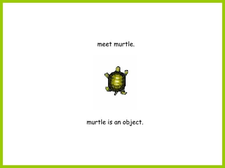 meet murtle.