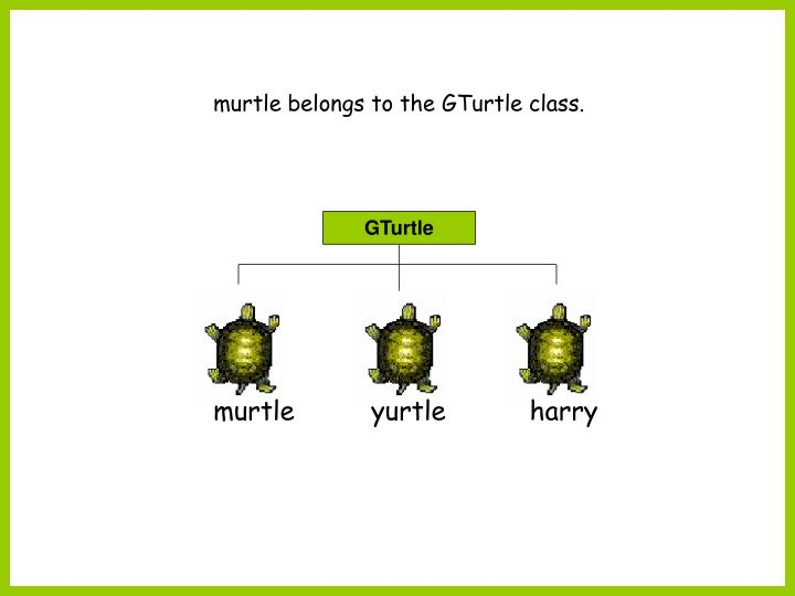 murtle belongs to the GTurtle class.