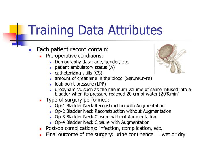 Training Data Attributes