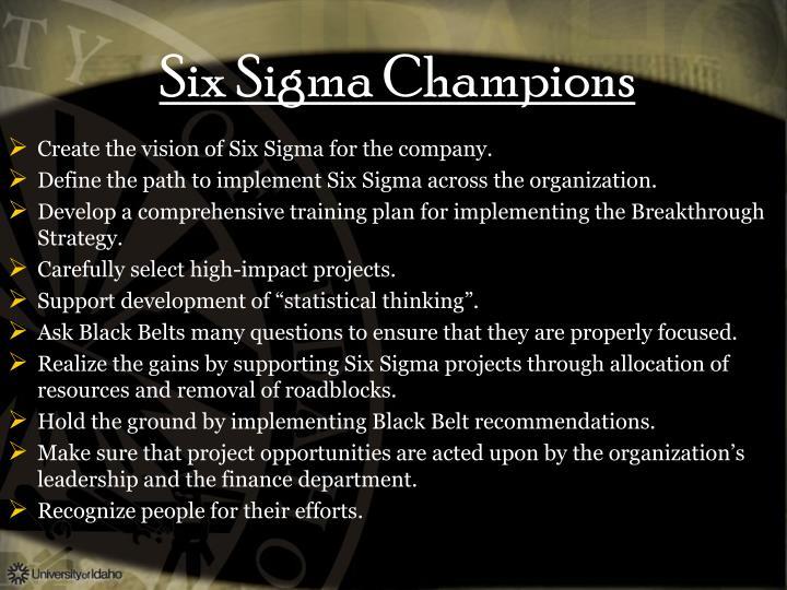 Six Sigma Champions