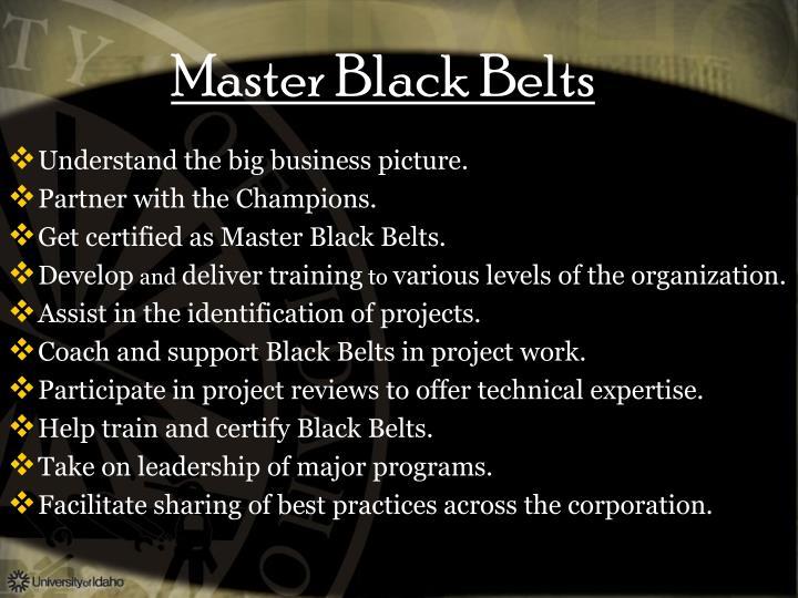 Master Black Belts