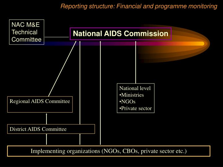 Reporting structure: Financial and programme monitoring