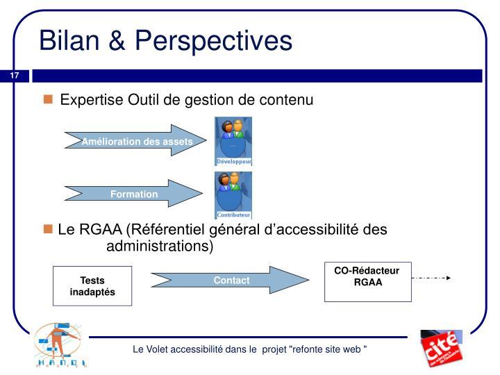 Bilan & Perspectives