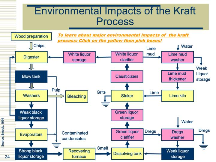Environmental Impacts of the Kraft Process