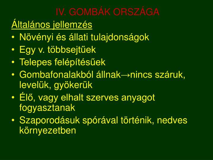 IV. GOMBÁK ORSZÁGA