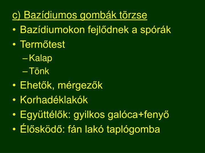c) Bazídiumos gombák törzse