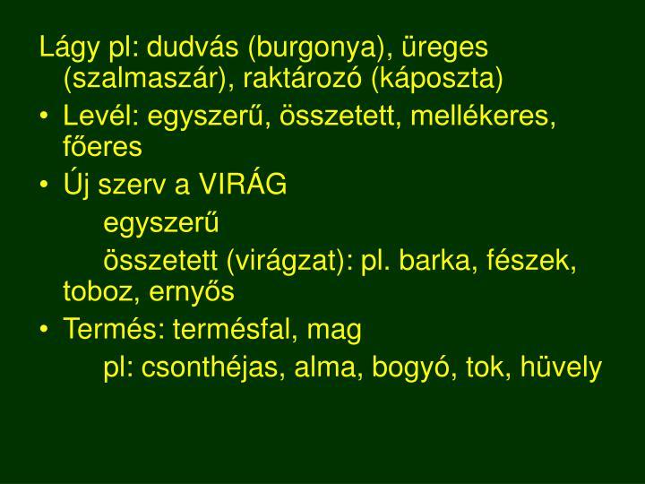 Lágy pl: dudvás (burgonya), üreges (szalmaszár), raktározó (káposzta)