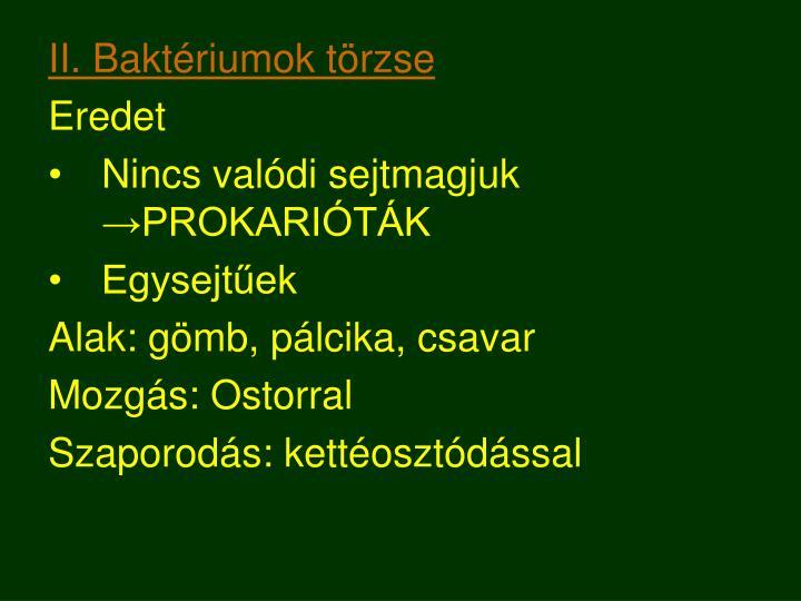 II. Baktériumok törzse