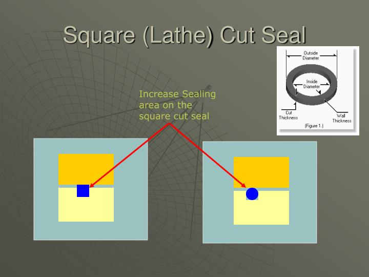 Square (Lathe) Cut Seal