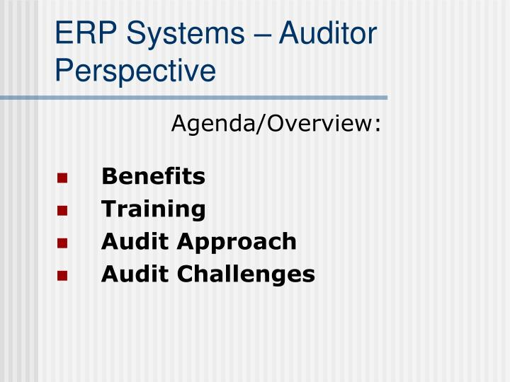 ERP Systems – Auditor Perspective