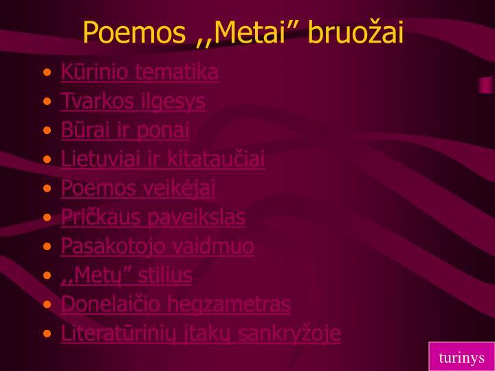 """Poemos ,,Metai"""" bruožai"""