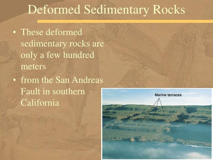 Deformed Sedimentary Rocks