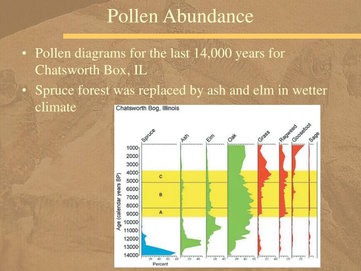 Pollen Abundance